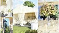 160219022939-vestuviu-vejai-kaunas.jpg