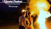 160502121958-ugnies-teatras-vilnius.jpg