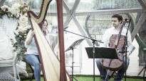 181124114111-arfos-ir-violonceles-duetas-vilnius.jpg