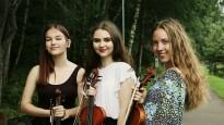 smuikininkes-viola-alytus